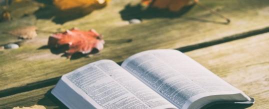Biblia pod ostrzałem