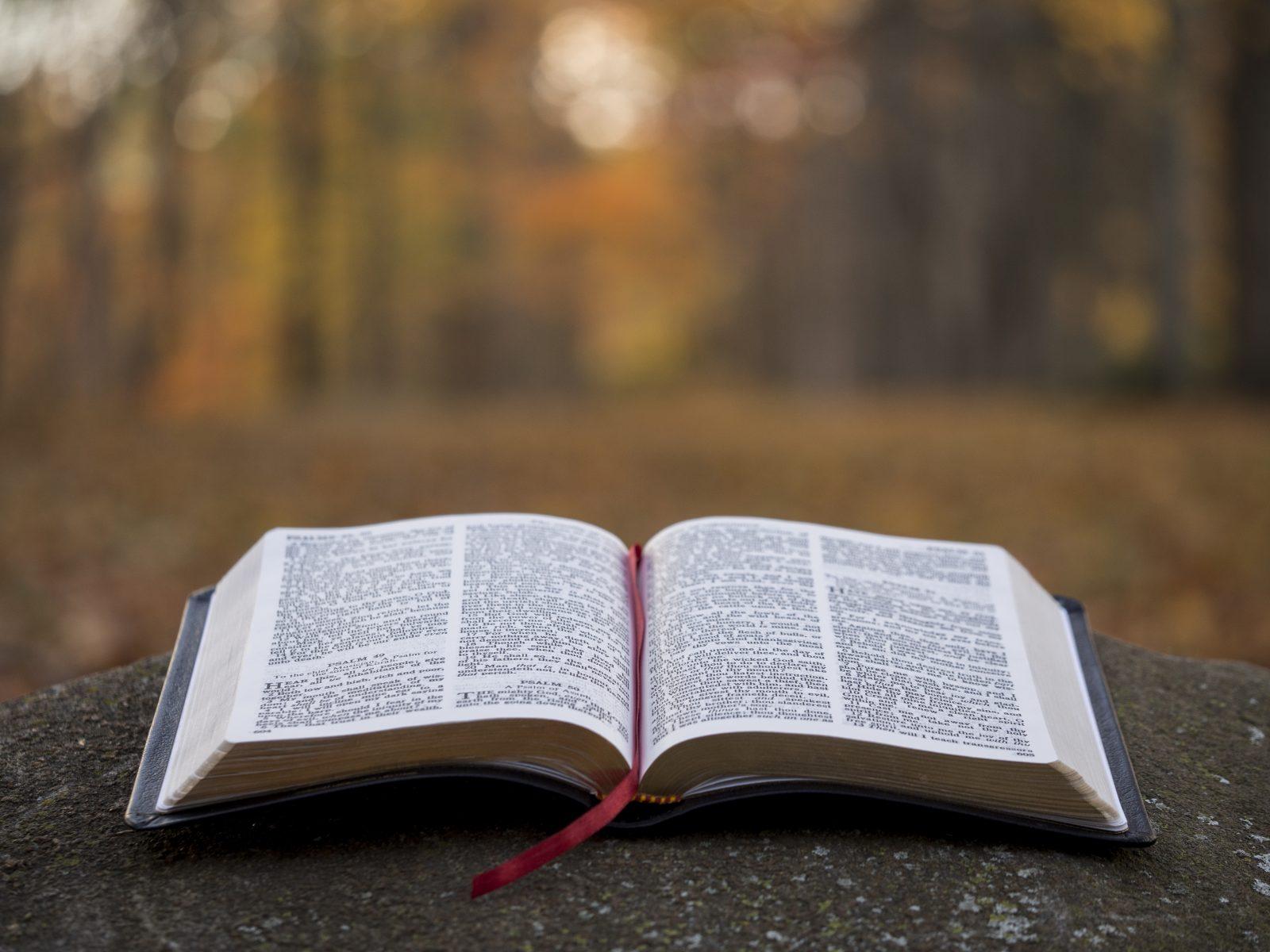 Czy historie z Biblii zdarzają się dziś?