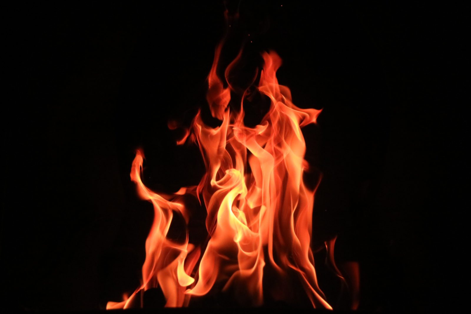 W ogniu prześladowań